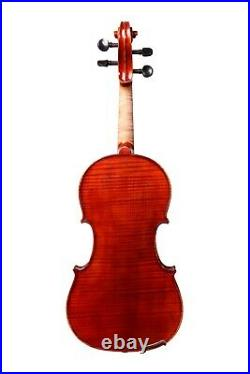 Professional Violin 4/4 Hand-Made by European Luthier #146