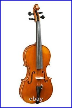 Professional Violin 4/4 Hand-made by Luthier with Old Wood + Case #11