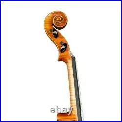 Special Violin 4/4 Hand-made from 1 Piece Back Maple by Luthier + Case #10