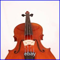 Very Special Violin 4/4 from 1 Piece Back Made in Europe 2020 #127