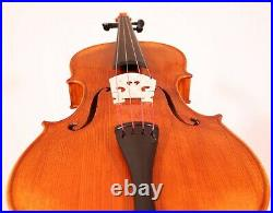 Viola 16,5' Hand-made by Luthier with Old seasoned Tonewood in Europe
